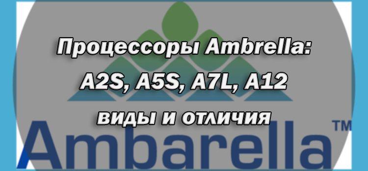 processoryi ambrella a2s a5s a7l a12 vidyi i otlichiya 4 gap - Рейтинг по брендам (Фэйковый рейтинг от videoregistratori.ru)