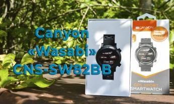 Обзор смарт-часов Canyon «Wasabi» CNS-SW82BB